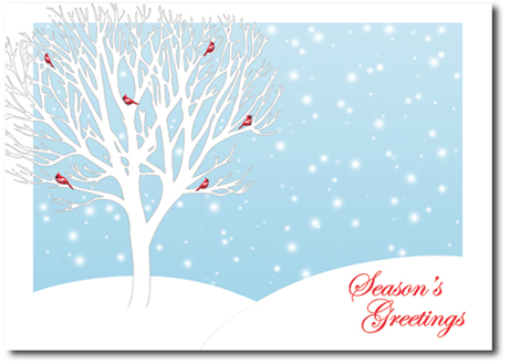 Holiday Greeting Cards | All Occasion Cards